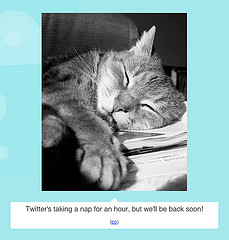 remember fail cat? i do b/c i am an uber tweeter