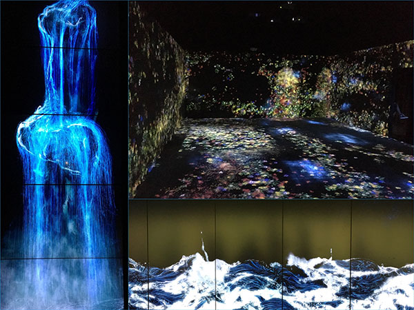 Various teamLab installations